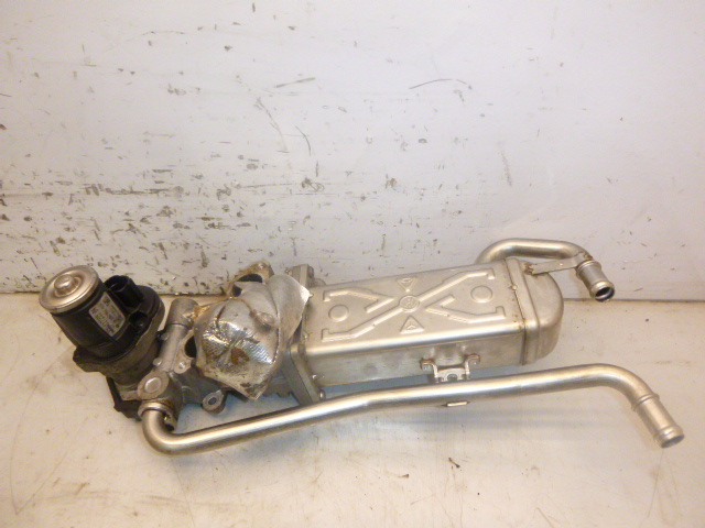 Abgaskühler Audi Seat Skoda 6R Touran 1T 1,6 CAY CAYC 03L131512AS DE263655